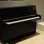 Sala settima: Pianoforte Tp 105
